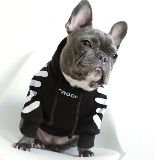 Dog WOOF Hoodie