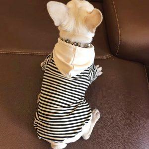 Cotton Striped Hoodies