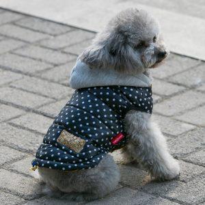Winter Waterproof Vest Jacket