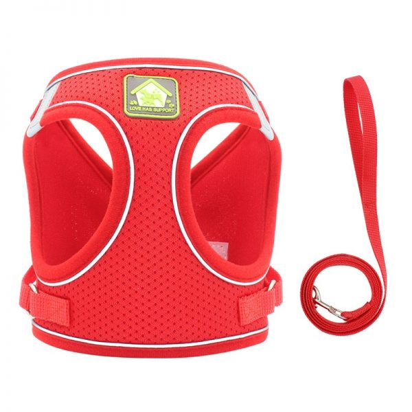 Breathable Mesh Vest Dog Harness and Leash Set